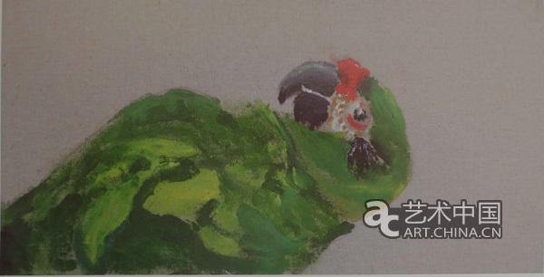 壁纸 动物 鸟 鸟类 鹦鹉 600_306