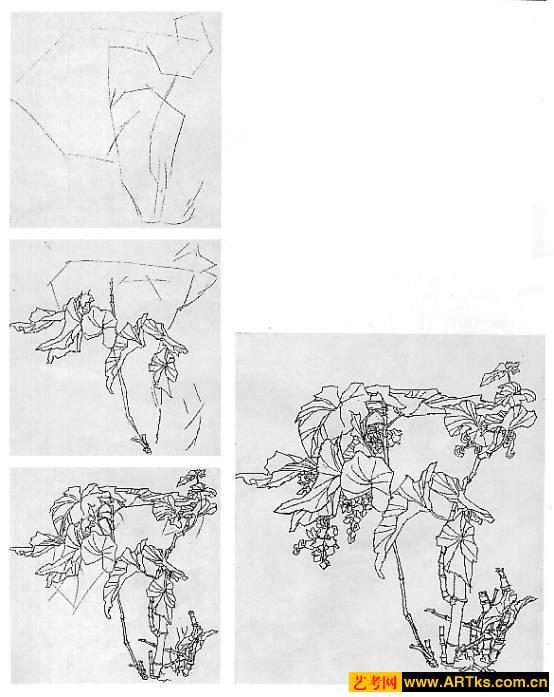 树木组合手绘效果图
