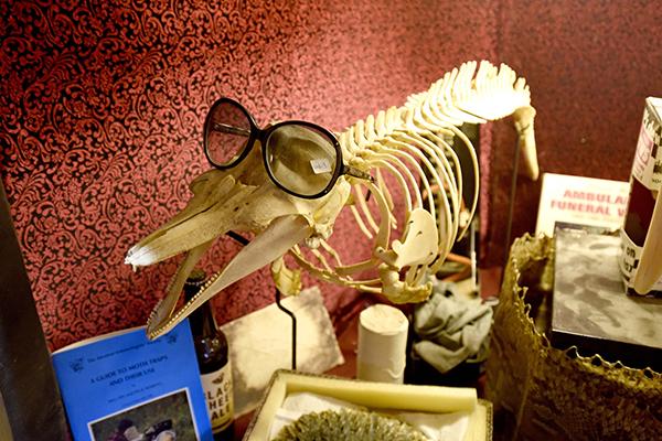 猎奇博物馆 名人 弃物 一丝诡异的味道