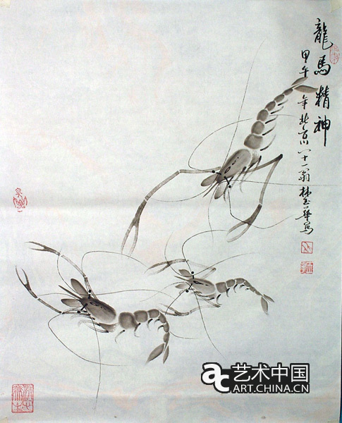 画虾子简单步骤图解