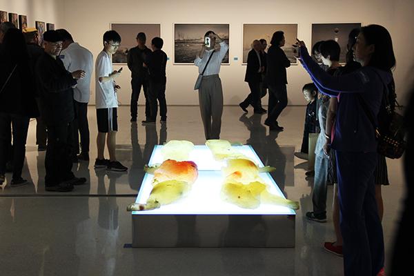 风起海上 吹至京城:2019华东师大美术学院教师作品展在京开幕