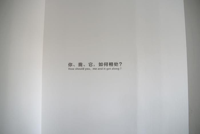 冯放个展开幕:你、我、它,如何相处?