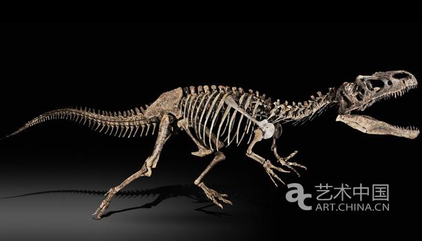 恐龙骨架在巴黎苏富比创拍卖纪录