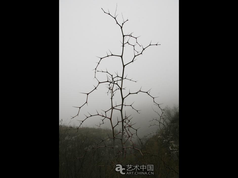 井陉吕家村_艺术中国