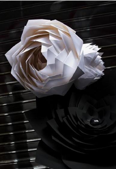 纸艺花朵图解步骤