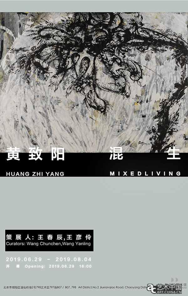 """""""黄致阳:混生""""个展即将亮相白盒子艺术馆"""