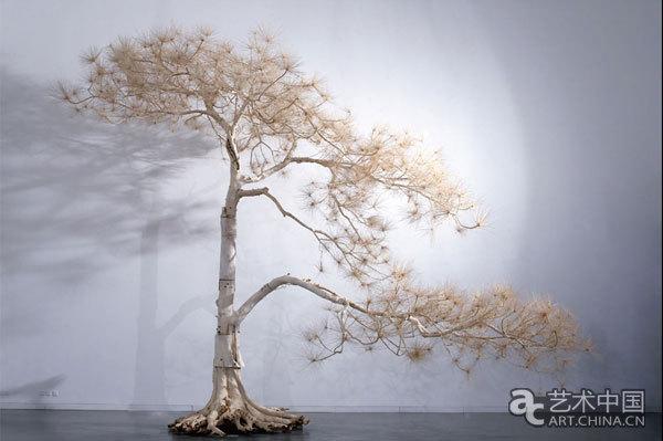 2米迎客松, 2007, 各种树木,柳树枝,树根,不锈钢螺丝等, 620x 820x