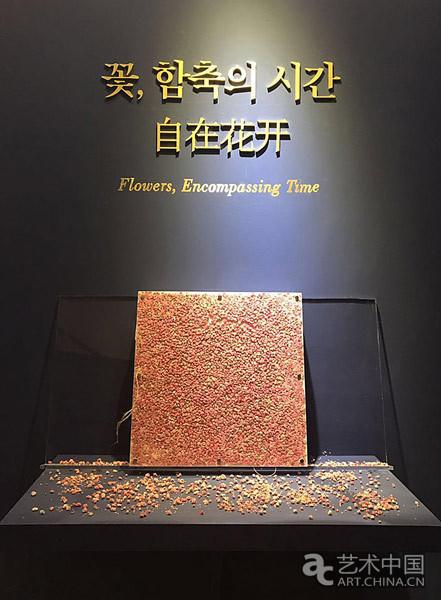 """""""自在花开——北京、首尔女艺术家联展""""在首尔开幕"""